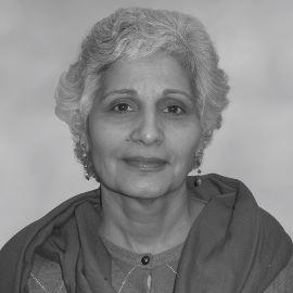 Dr. Raman Kaul